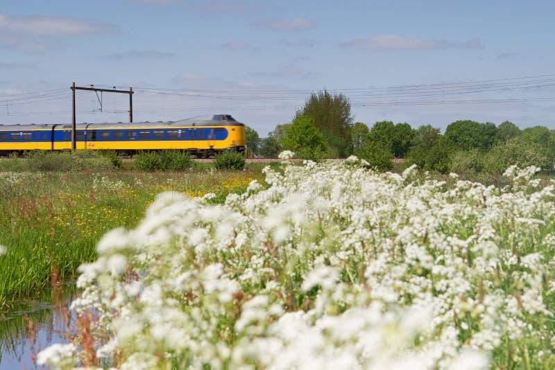 El tren pasa el pasto en Hoogeveen, Países Bajos imagenes de archivo