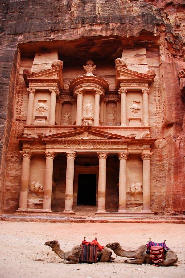 El Tresury con dos camellos en el frente, Petra, Jordania fotografía de archivo libre de regalías