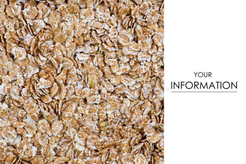 El trigo de las escamas de la avena de la planta foto de archivo libre de regalías