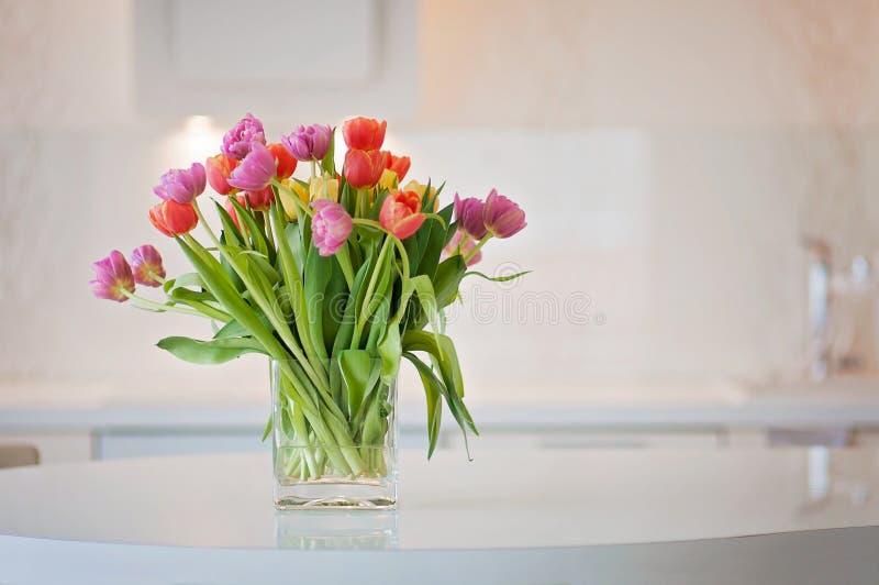 El tulipán de activación y colorido florece en una cocina limpia fotos de archivo