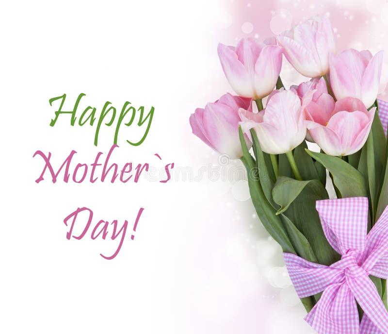 El tulipán fresco de la primavera florece como diseño de la postal del día de fiesta foto de archivo libre de regalías