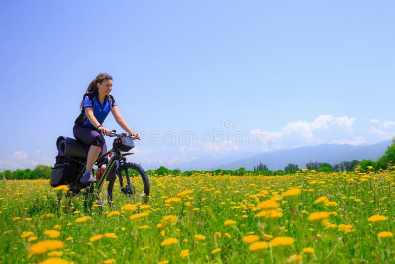 El turista de la muchacha monta una bici entre los campos florecientes en el fondo de altas montañas foto de archivo libre de regalías