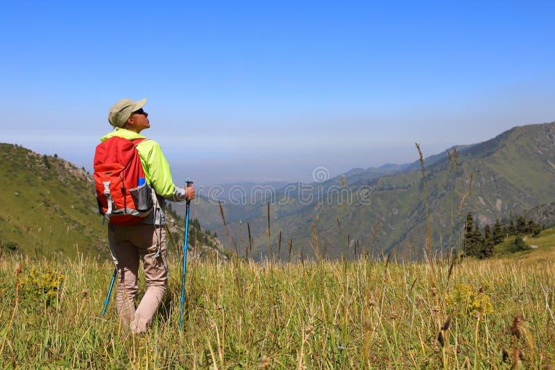 El turista de la mujer joven se coloca en el medio de un prado foto de archivo libre de regalías