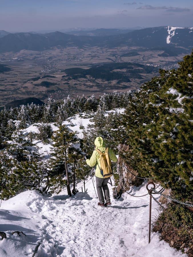 El turista desciende a lo largo de una trayectoria escarpada, nevada asegurada por las cadenas, sorprendiendo opiniones en fondo, imagen de archivo