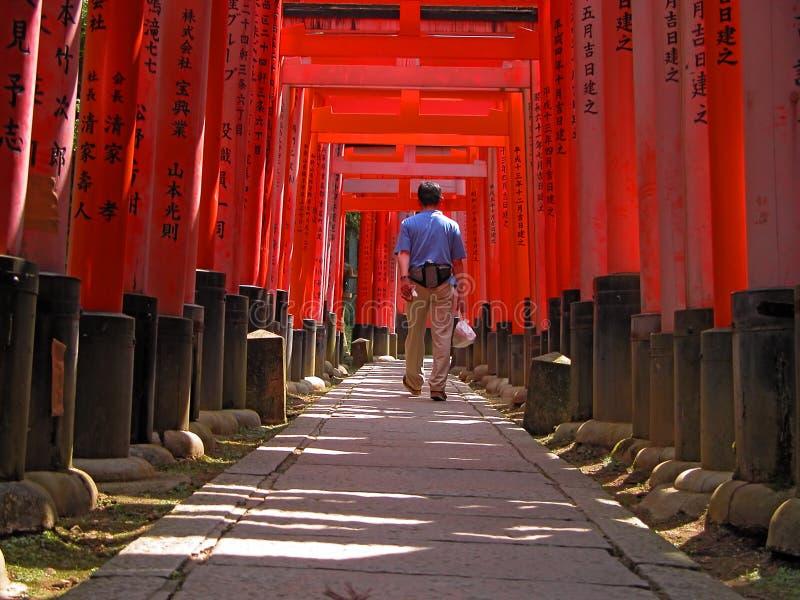 El Turista En Kyoto-Inari Bloquea El Túnel Fotografía de archivo