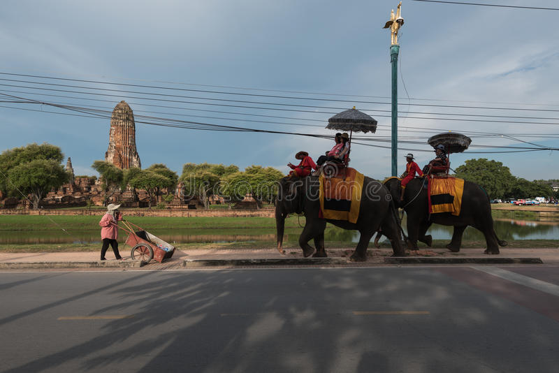 El turista está montando elefantes en el parque histórico de Ayutthaya imagen de archivo libre de regalías