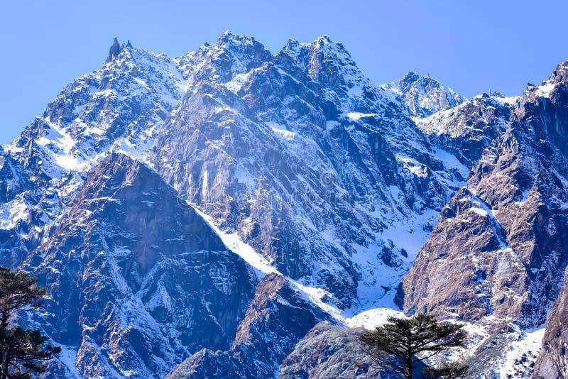 El valle de Yumthang o el valle de Sikkim, es un santuario en los prados rodantes rodeados por las montañas Himalayan, Sikkim del imágenes de archivo libres de regalías
