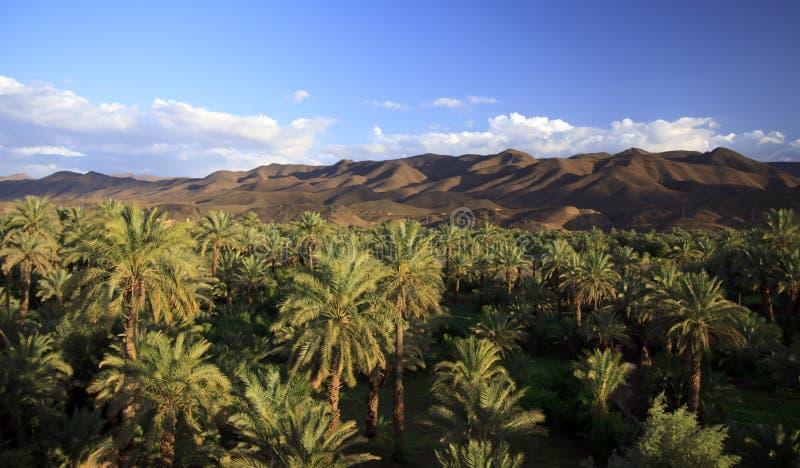 El valle del río Draa, Marruecos, África foto de archivo libre de regalías