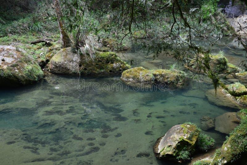 El valle se cose con las pequeñas corrientes del agua imagen de archivo libre de regalías