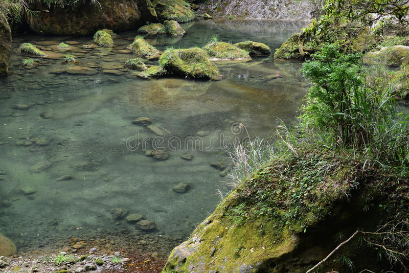 El valle se cose con las pequeñas corrientes del agua imágenes de archivo libres de regalías