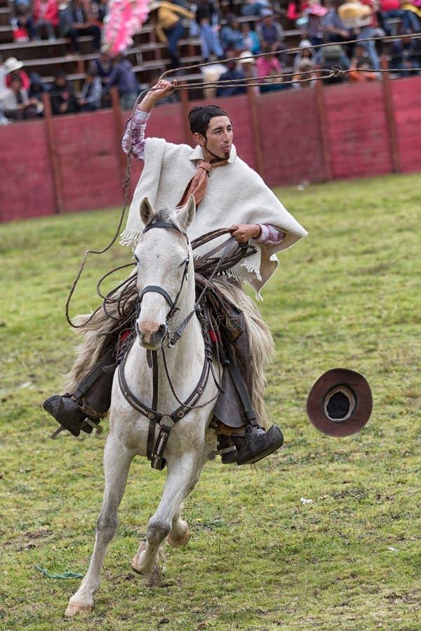 el vaquero monta su caballo mientras que lazo de los tiros imagen de archivo libre de regalías