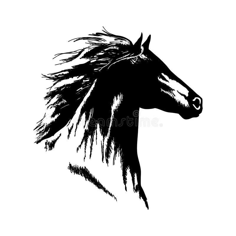 El vector blanco y negro dibujado mano de la cabeza de caballo aisló diseño ilustración del vector