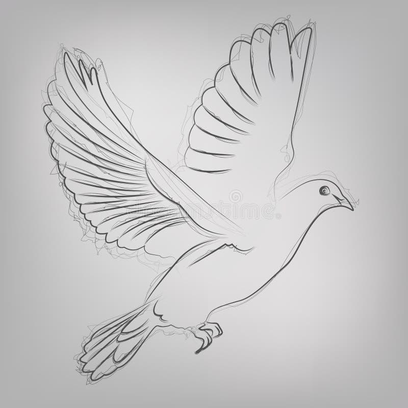 El vector bosquejó la paloma stock de ilustración