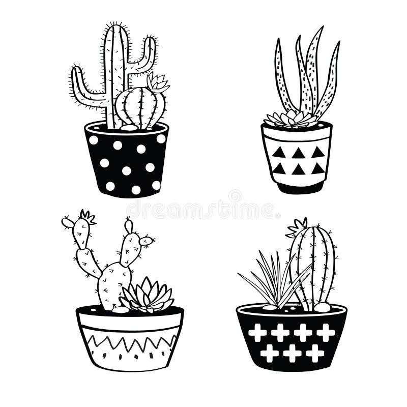 El vector fijó con los cactus y los succulents blancos y negros en potes stock de ilustración