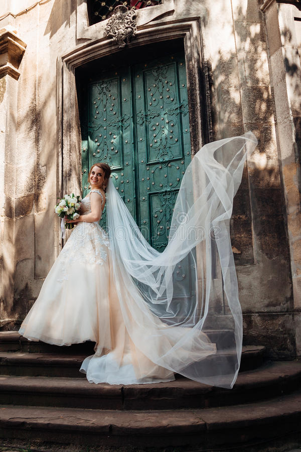 El velo delicado vuela alrededor de novia magnífica foto de archivo libre de regalías