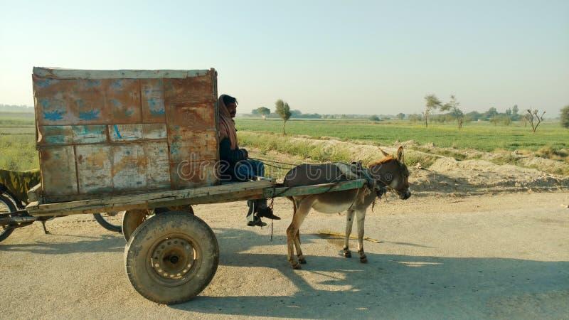 El vendedor ambulante foto de archivo libre de regalías
