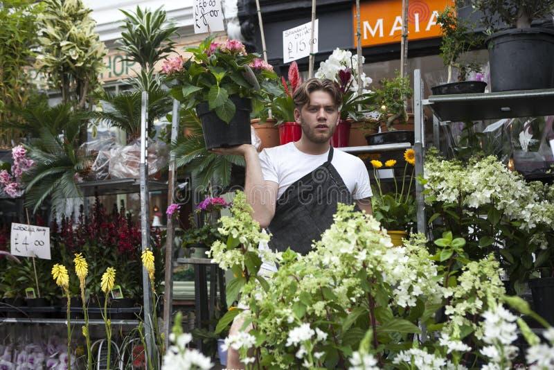 El vendedor de flor en los mercados de la flor del camino de Columbia hace girar sus ventas repite mientras que sostiene una sola imagen de archivo