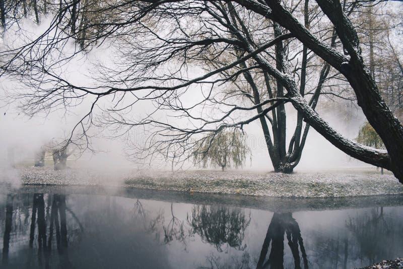 El venir de la niebla imágenes de archivo libres de regalías