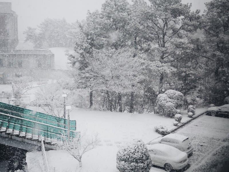 El venir de la nieve imágenes de archivo libres de regalías