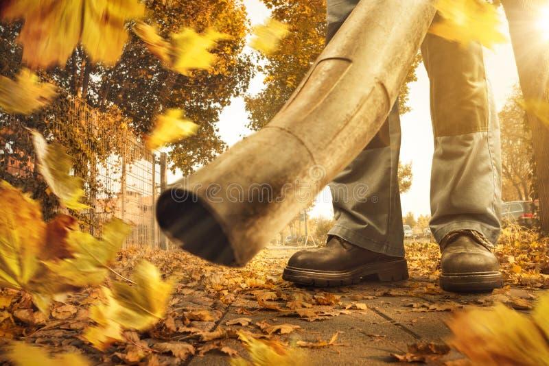 El ventilador de hoja está quitando las hojas caidas de la acera fotografía de archivo libre de regalías