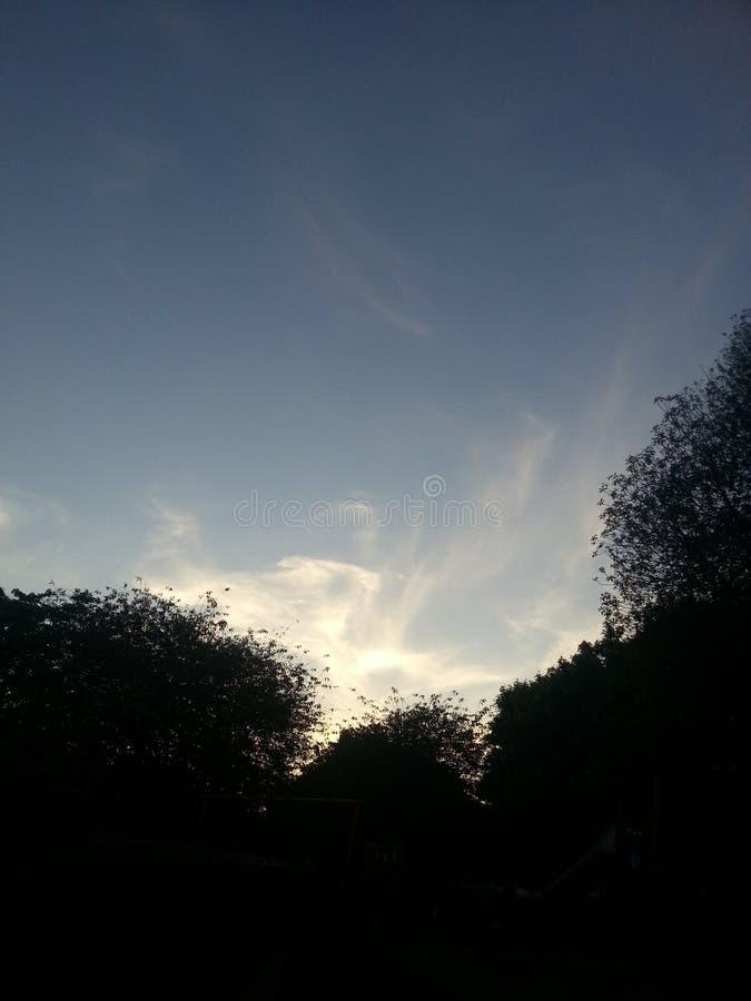 El verano del cielo se nubla los árboles azules fotos de archivo libres de regalías