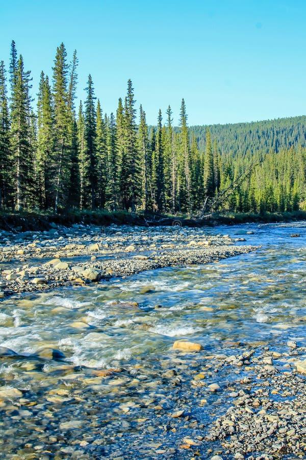 El verano riega en The Creek, zona de recreo provincial del fantasma del norte, Alberta, Canadá imagen de archivo