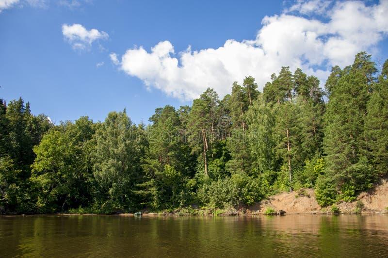 El verano se nubla árboles de las cañas del río imagenes de archivo
