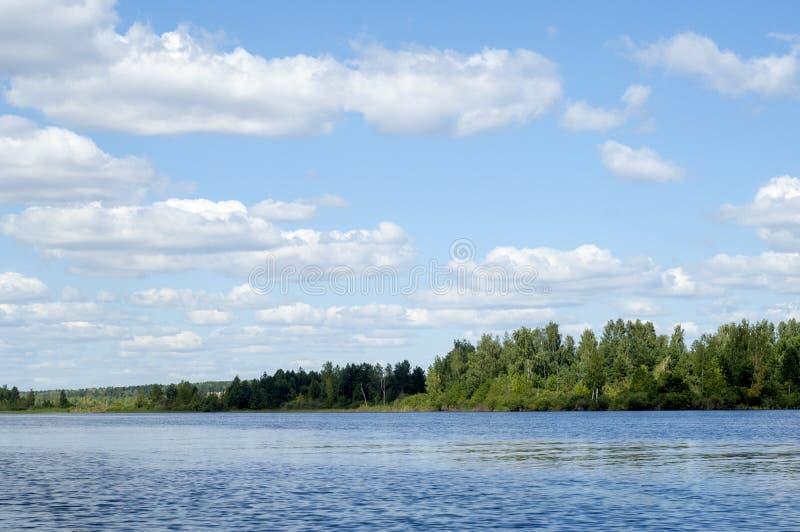 El verano se nubla árboles de las cañas del río imagen de archivo libre de regalías