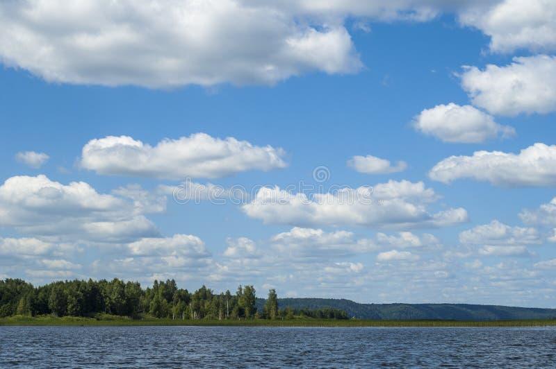 El verano se nubla árboles de las cañas del río fotografía de archivo libre de regalías