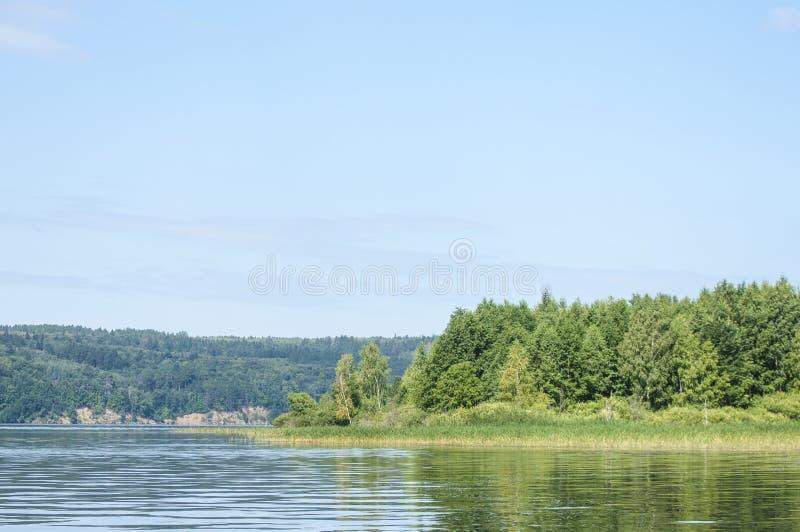 El verano se nubla árboles de las cañas del río fotos de archivo libres de regalías