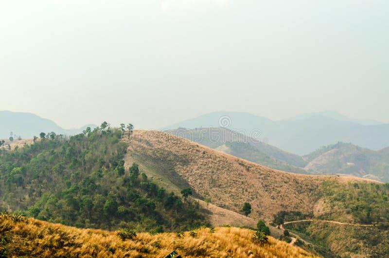 El verano seco pasta las montañas imágenes de archivo libres de regalías