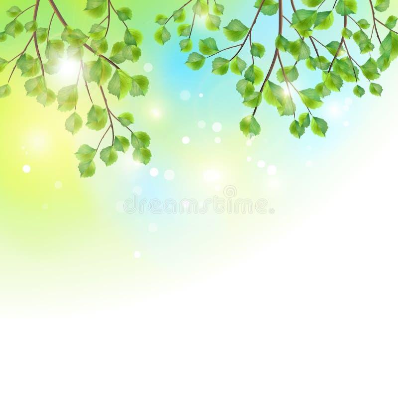 El verde deja el fondo del vector de las ramas de árbol libre illustration