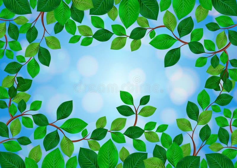 Download El verde deja el marco ilustración del vector. Ilustración de diseño - 44855262