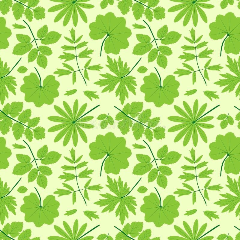 El Verde Deja El Modelo Inconsútil. Foto de archivo libre de regalías