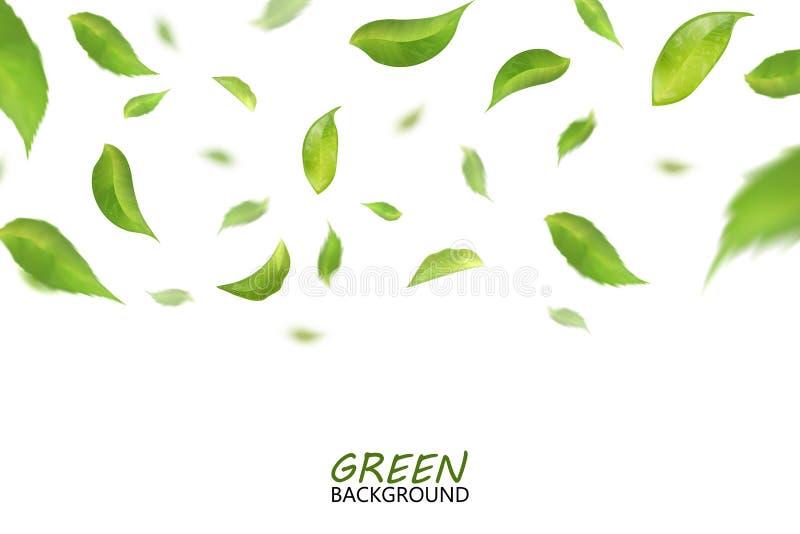 El verde fresco borroso del vuelo se va, imitación de la calidad 3d Vector ilustración del vector