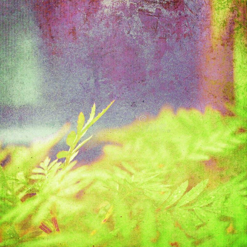 El verde retro deja el fondo imagen de archivo
