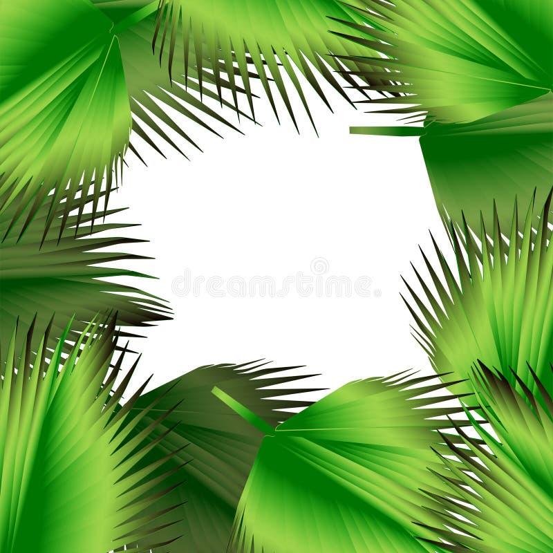 Download El Verde Tropical Deja El Ejemplo Ilustración del Vector - Ilustración de botánico, floración: 42443314