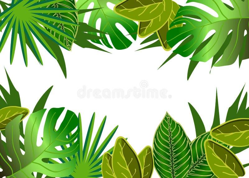 Download El Verde Tropical Deja El Ejemplo Ilustración del Vector - Ilustración de ramo, ramificación: 42443338