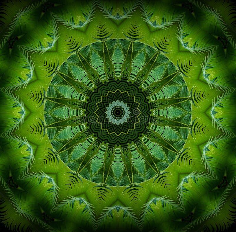 El verdor abstracto modela, las hojas del verde de la palma con efecto del caleidoscopio stock de ilustración