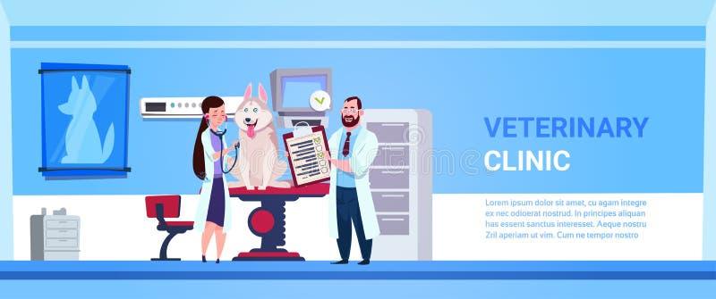 El veterinario doctor la bandera del concepto de la veterinaría de la oficina de Examining Dog In Clinic con el espacio de la cop ilustración del vector