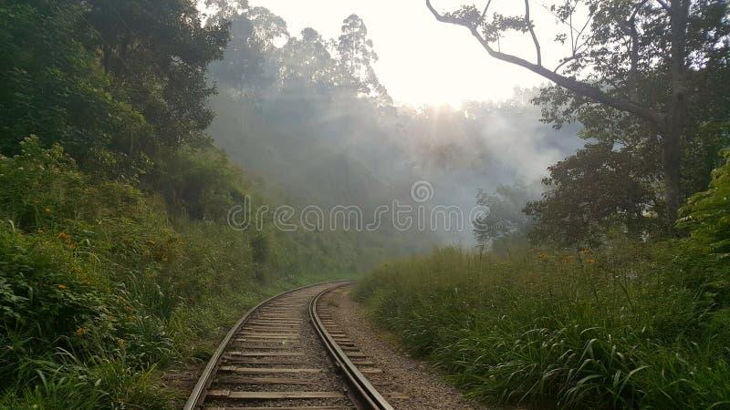 el viajar en Sri Lanka fotos de archivo