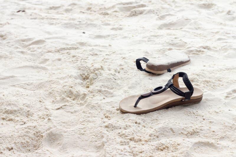 El viaje, se relaja, verano imagen de archivo libre de regalías
