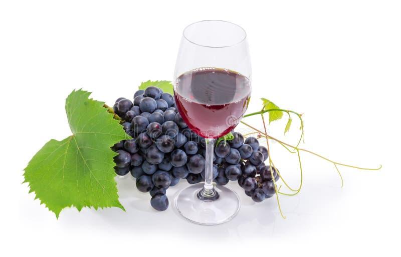 El vidrio de vino rojo contra de las uvas azules se agrupa imagen de archivo