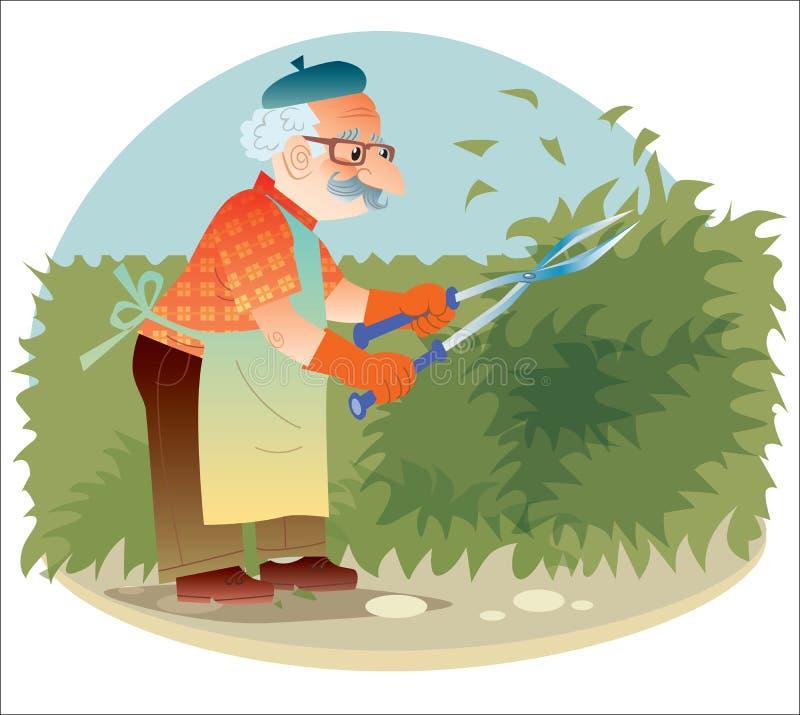 El viejo jardinero que trabaja en el jardín que corta los arbustos libre illustration