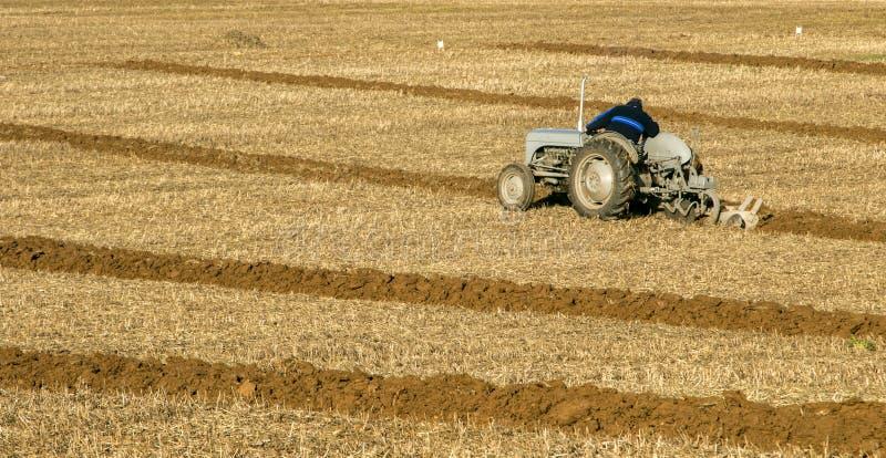 El viejo vado fergusen el tractor en el partido de arado foto de archivo