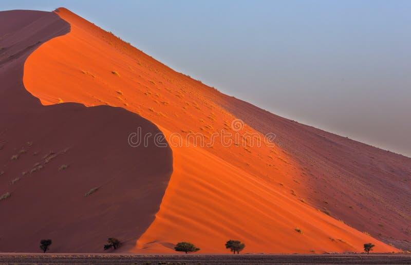 El viento barrió la duna foto de archivo