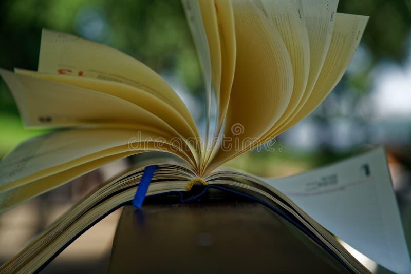 El viento da vuelta a las páginas de las mentiras abiertas del cuaderno en la barandilla de madera en parque, concepto del negoci imagen de archivo