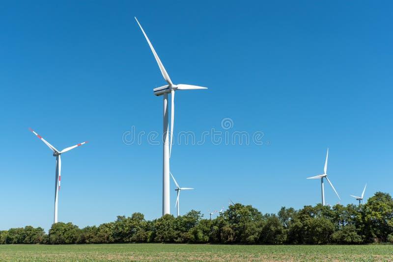 El viento rueda adentro los campos fotografía de archivo