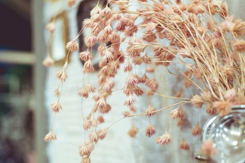 Download El vintage florece color foto de archivo. Imagen de pergamino - 42441100
