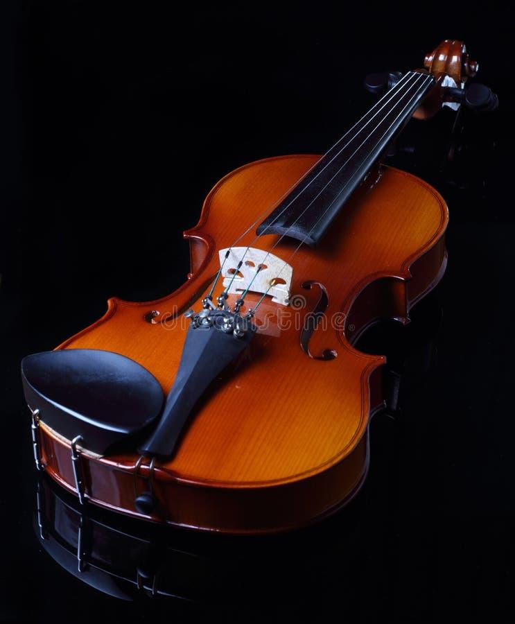 El violín fotografía de archivo libre de regalías